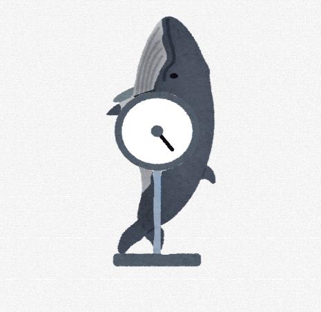 【急募】クジラの体重を測る方法