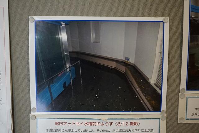 DSC05576