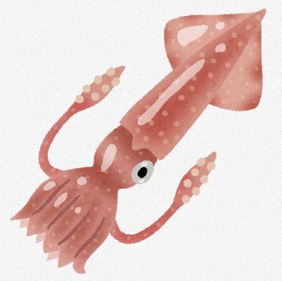 日本の消費魚介類第一位「イカ」←これ