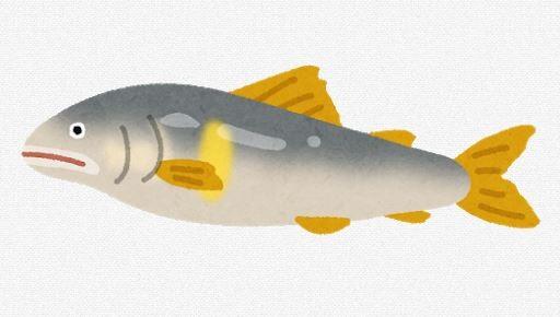 【原因不明】箱根でアユ大量死 解禁目前、今シーズンの釣りピンチ