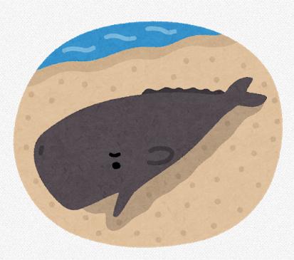 【高すぎ】座礁したクジラの処理費用、一頭あたり400万円もかかっていたことが判明 自治体の大きな負担に