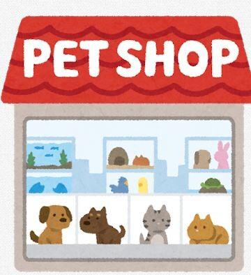 【動物虐待】 ペット殺傷や虐待、罰則厳しく 改正動物愛護法が施行へ