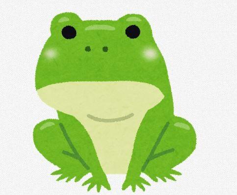 昔の人って小学校の授業にカエルの解剖したってマジなん?