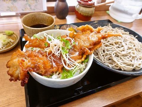 恵焦庵 (2)