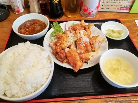 一条 まるふじ (3)