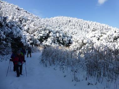 ④白銀の稲尾岳1月