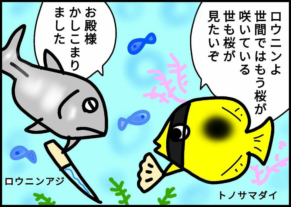 248.ハナオトメの貫花の舞