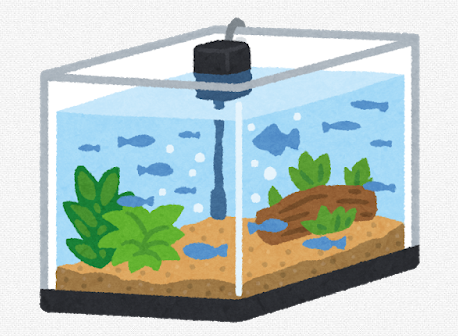 ワイ「水槽買ったけど殺風景やし水草でも入れるか」スネール「よろしくニキーーー!wwww」←これ