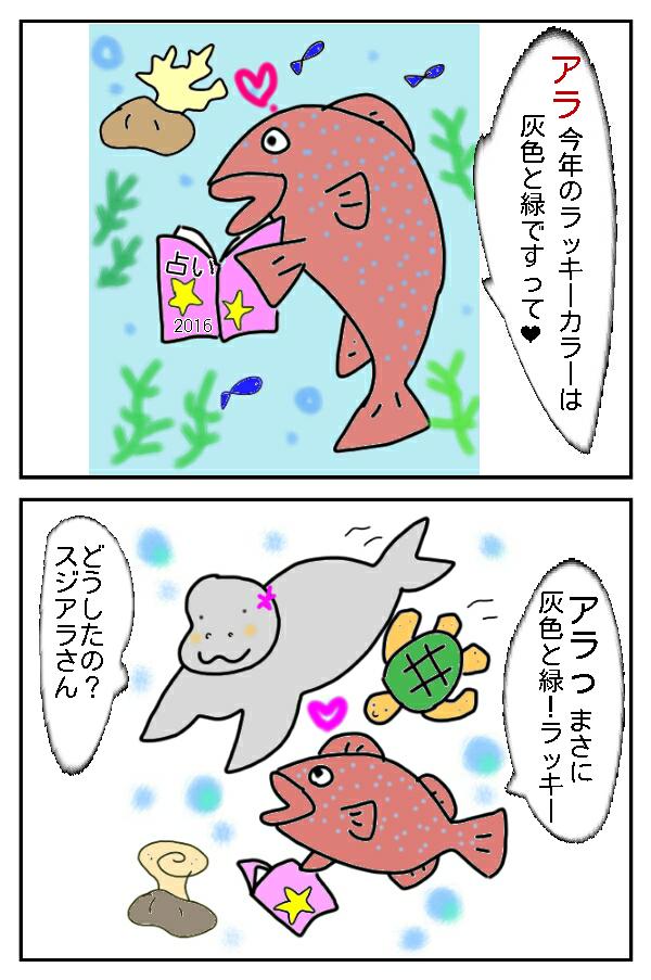 143.アラ!高級魚!