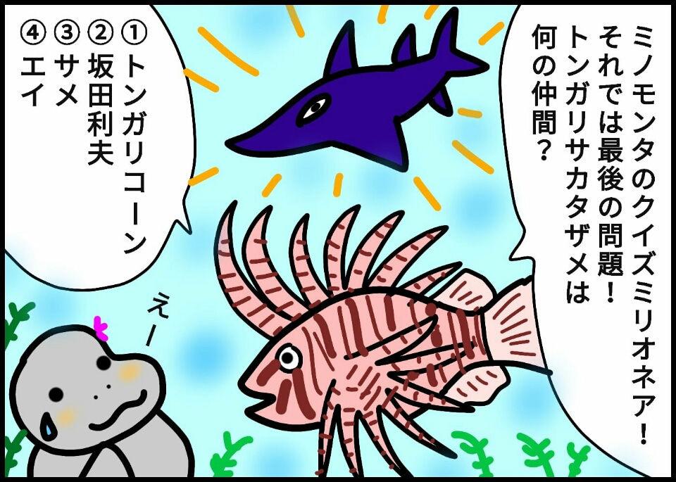 246.トンガリサカタザメって何?!