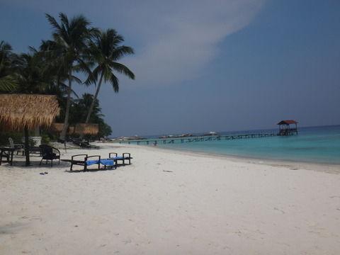 マレーシアのレダン島に行ってきたよ☆ ~海中写真をいっぱいアップするゾ~