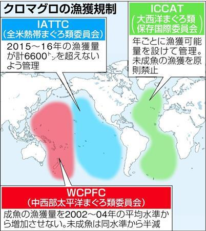【国際】クロマグロ保護へ「緊急の漁獲規制を」 激減で日本が提案 国際会議開幕
