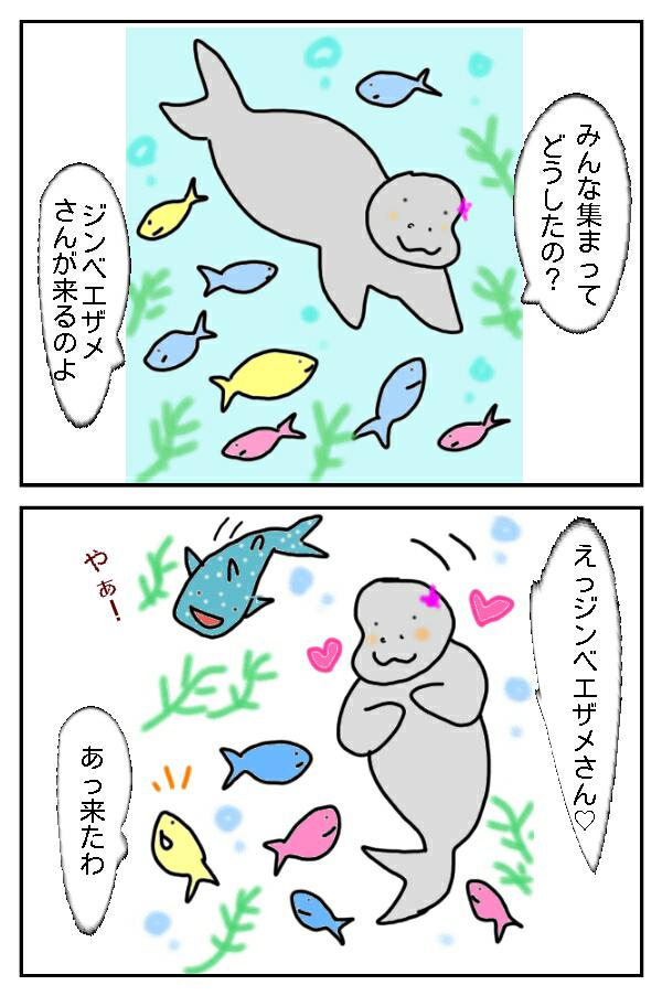 79.海のヒーロージンベエザメ!
