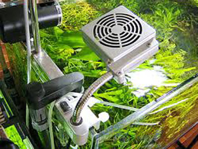 【アクアリウム】クーラーファンで室温35でも水温26度をキープしてくれる