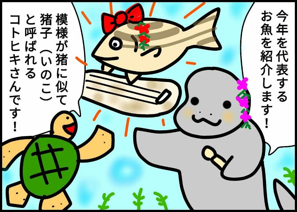 245.今年のお魚発表!