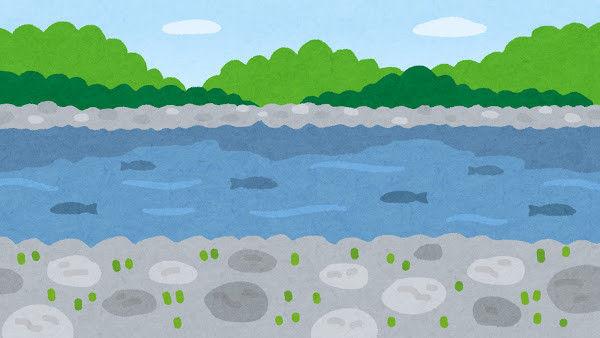 【京都】魚の分布、水中DNAで推測 京大助教が成功