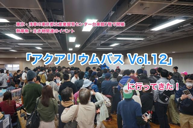 【レポート】熱帯魚・生き物関連のイベント「アクアリウムバス Vol.12」に行ってきた!