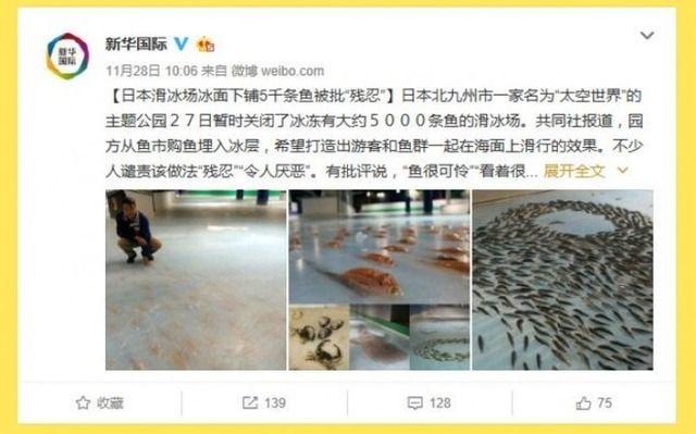 【中国】魚5000匹を氷漬けに!日本のスケートリンクに中国ネットも反応「この程度で残酷?」「発想はすごくいいと思う」