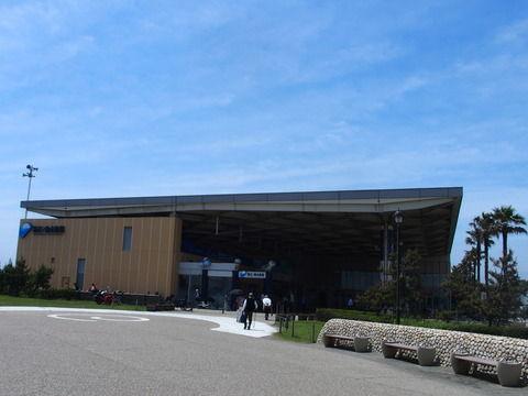 新江の島水族館に行ってきた!
