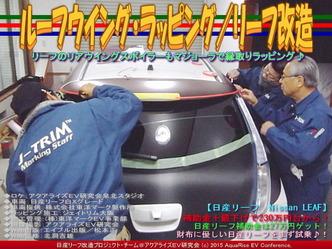 ルーフウイング・ラッピング/リーフ改造02