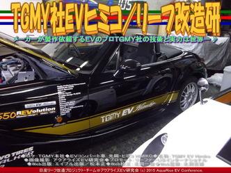 TGMY社EVヒミコ/リーフ改造研01