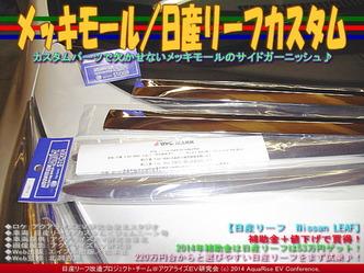 メッキモール/日産リーフカスタム02