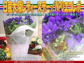 日産大阪レディースデイ/NPOエコレボ画像01