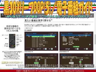 黒30XリーフDOP(5)/電子番組ガイドEPG画像02
