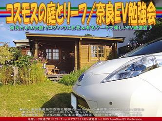 コスモスの庭とリーフ(3)/奈良EV勉強会02
