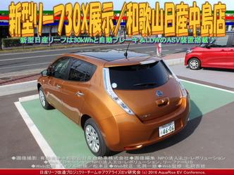 新型リーフ30X展示(2)/和歌山日産中島店03