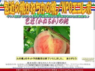 かねちかの桃/エコレボ産リーフ改造02