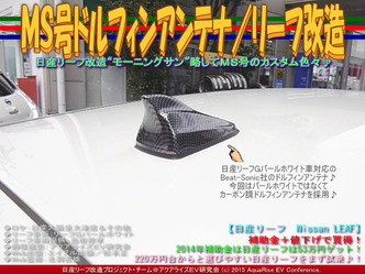MS号ドルフィンアンテナ/リーフ改造04