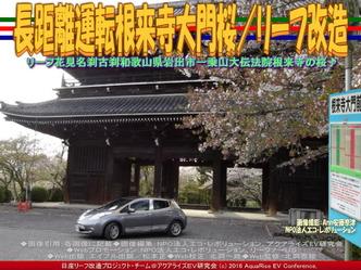 長距離運転根来寺大門桜(2)/リーフ改造01