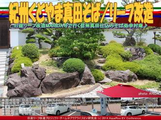 紀州くどやま真田そば/リーフ改造02