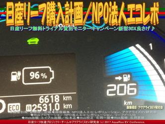 リーフ購入計画【5】30Xスペック/エコレボ画像02