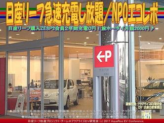 日産リーフ急速充電し放題(2)/エコレボ画像01
