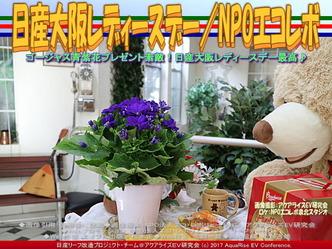日産大阪レディーズデイ/NPOエコレボ画像03