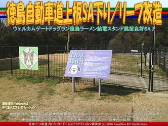 徳島自動車道上板SA下り/リーフ改造03