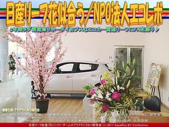 日産リーフ花似合う(2)/NPOエコレボ画像03