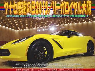 ヤナセ感謝の日2015/リーガロイヤルホテル大阪04 ▼クリックで640x480に拡大