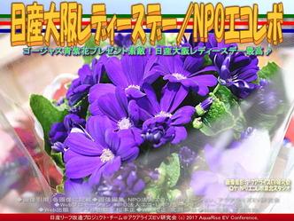 日産大阪レディースデイ/NPOエコレボ画像03