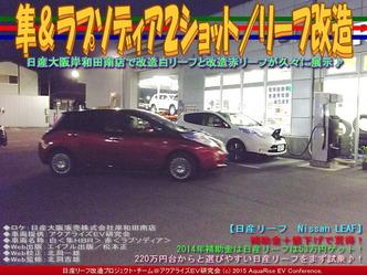 隼&ラプソディア2ショット/リーフ改造01