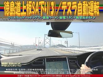 徳島道上板SA下り(3)/テスラ自動運転03