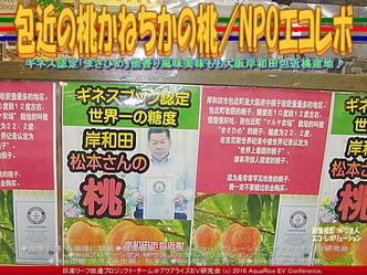 かねちかの桃/エコレボ産リーフ改造03