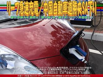 リーフ急速充電/中国自動車道勝央SA下り03