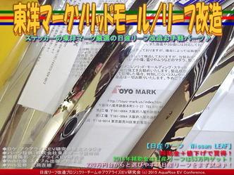 東洋マークソリッドモール/リーフ改造05