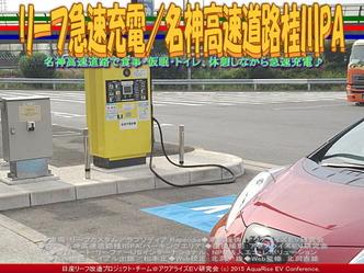 リーフ急速充電/名神高速道路桂川PA03