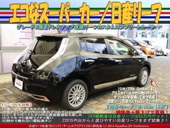 エコなスーパーカー/日産リーフ06