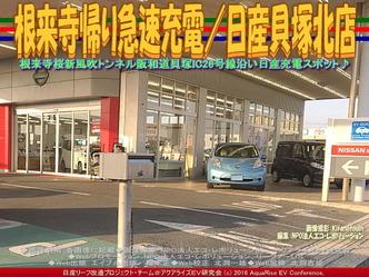 根来寺帰り急速充電/日産貝塚北店04