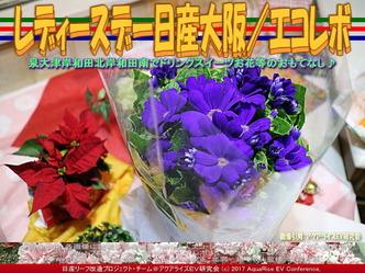 レディースデイ/NPO法人エコ・レボリューション画像01